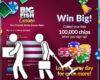 big-fish-games-social-casino-layoffs