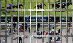 british-racing-bans-spectators-again