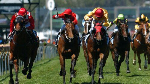 Horse-Racing-Great-Race