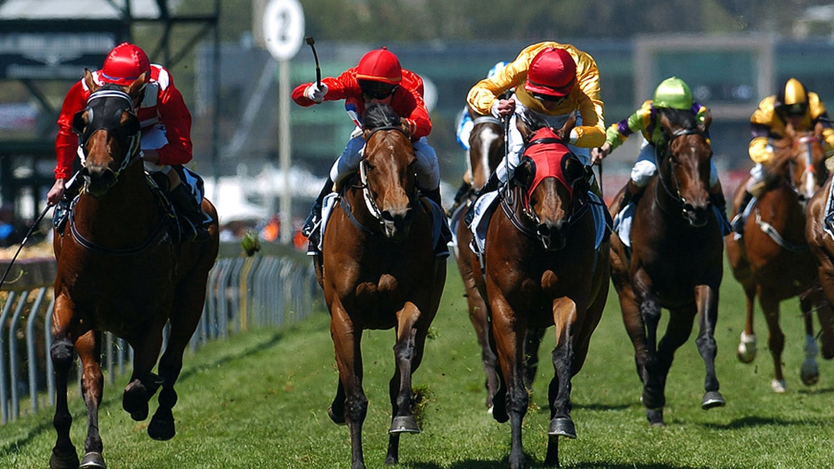 Horse-Racing-Great-Race