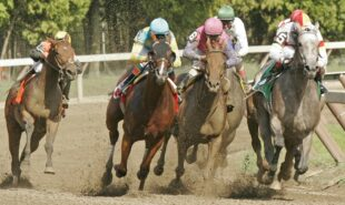 authentic-atop-preakness-stakes-betting-lines