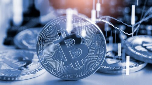 2021-to-be-a-banner-year-for-digital-currency-adoption