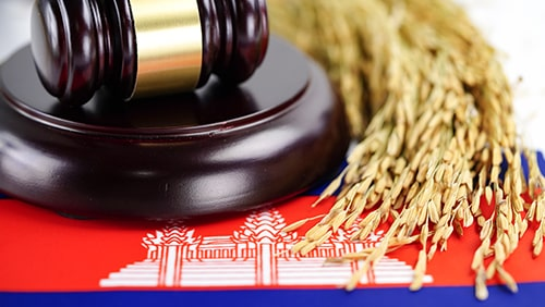 Cambodia flag and Judge gavel with gold grain from agriculture farm. Law and justice court concept.