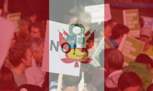 Flag of Peru against a background of a protest