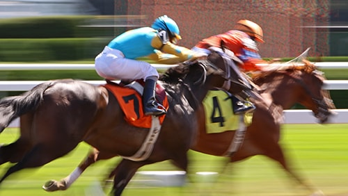 Photo of a Horse Racing event
