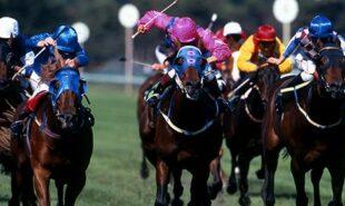 Horserace betting levy board grants sports betting las vegas casinos